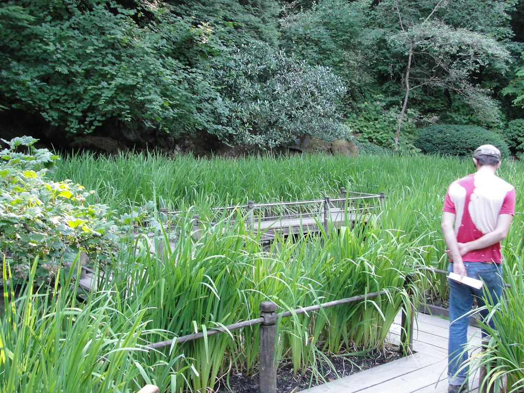Day 7 japanese garden portland oregon candi flickr - Portland japanese garden free day ...