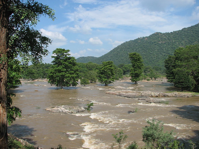 Nature & swollen rivers