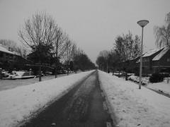 Bovendijk