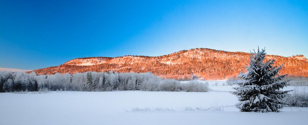 Kald morgen by Oddne Rasmussen