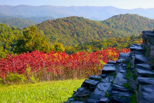 flora foliage red stone rock mountain forest tree shrub nature landscape fall autumn cairn wall rural