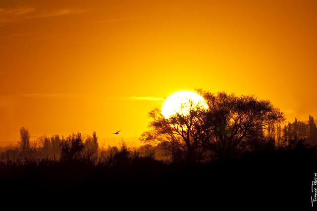 La cuna del Sol
