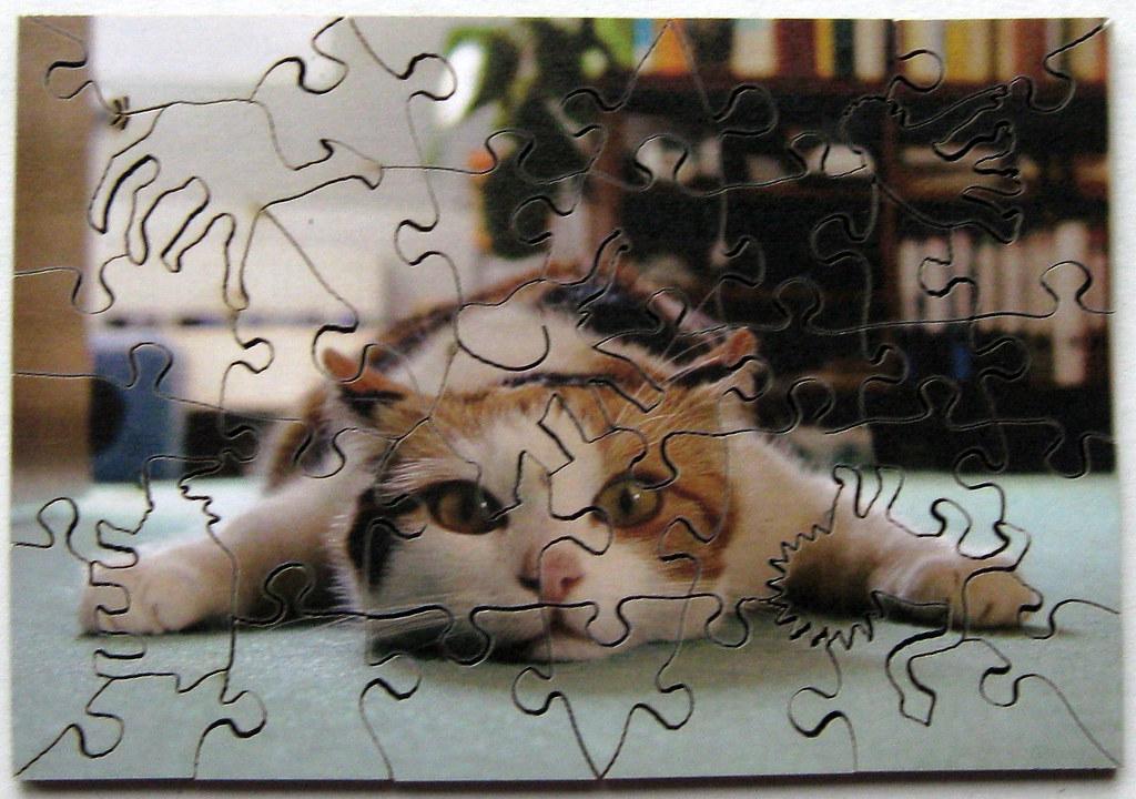 Ich Bin Platt Wentworth Wooden Jigsaw Puzzle 39 Pieces Flickr