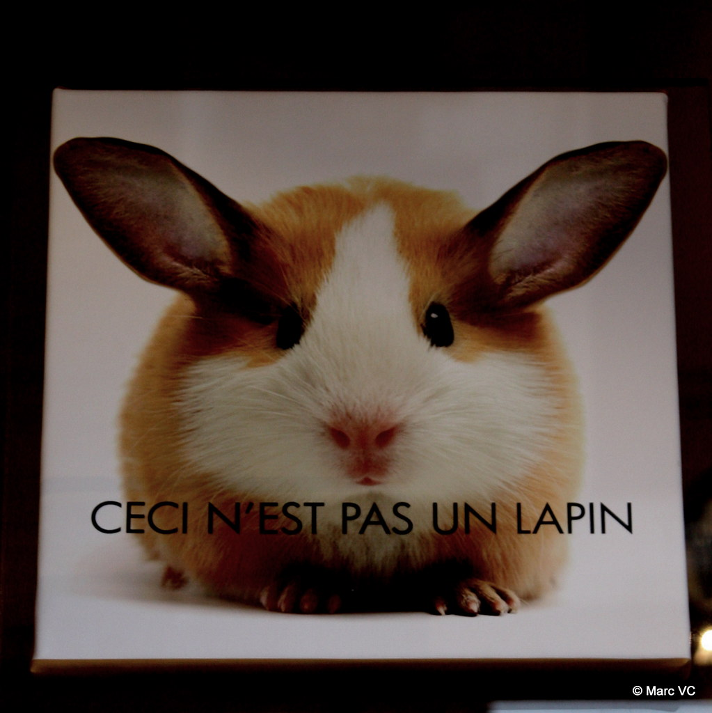 Ceci Nest Pas Un Lapin >> Ceci N Est Pas Un Lapin This Is Not A Rabbit Seen In Art Flickr
