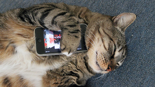 Meatloaf Loves His iPhone | by 37prime
