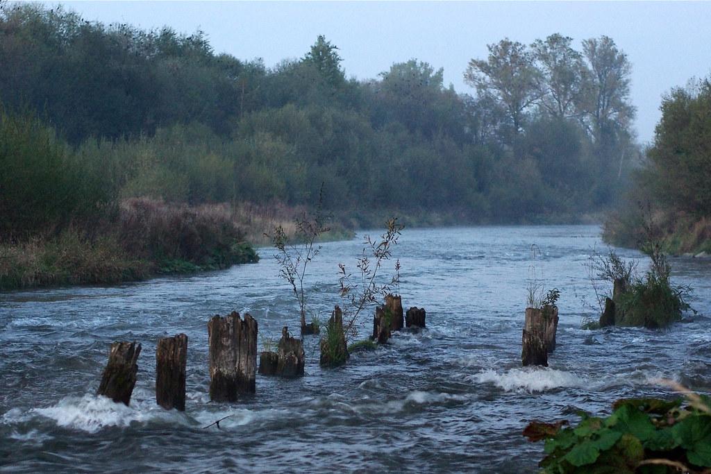 Rzeka o zmierzchu / River at dusk
