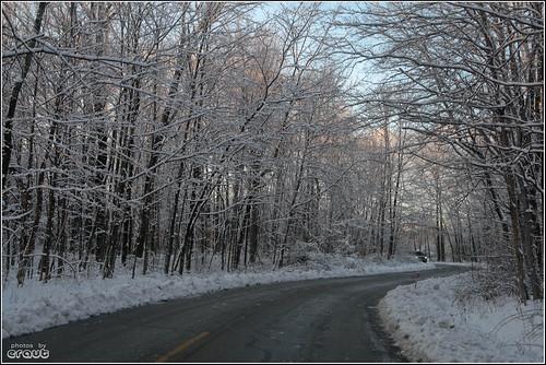 road trees nature snowy metropark blacklickwoods throughthewindshield tamron1750mmf28 eos400d canondigitalrebelxti