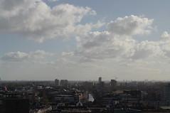 Leiden horizon