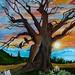 mom's newest tree painting