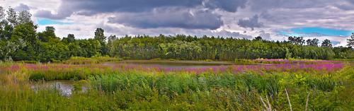 panorama clouds belgium wind wolken antwerp hdr antwerpen landschap lier koningshooikt kattestaart natuurpunt itterbeek overstromingsgebied jutseplassen