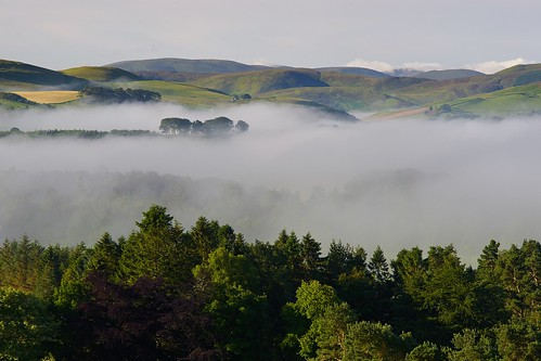 uk bridge trees summer mist west tree canon landscape scotland scenery view none sony hill scottish hills 135 a7 borders linton schottland fd ecosse peeblesshire tweeddale broomlee romanno