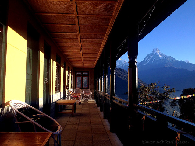 Hotel Tadapani 2680M #Nepal
