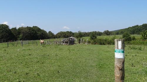 chfstew appalachiantrail landscape tennessee tnjohnsoncounty