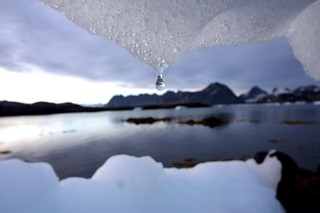 What If Global Temperatures Rose by 4 Degrees Celsius? | by klem@s