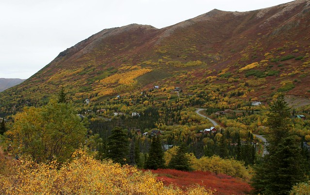 Fall colors near the end of Hiland Road, Eagle River