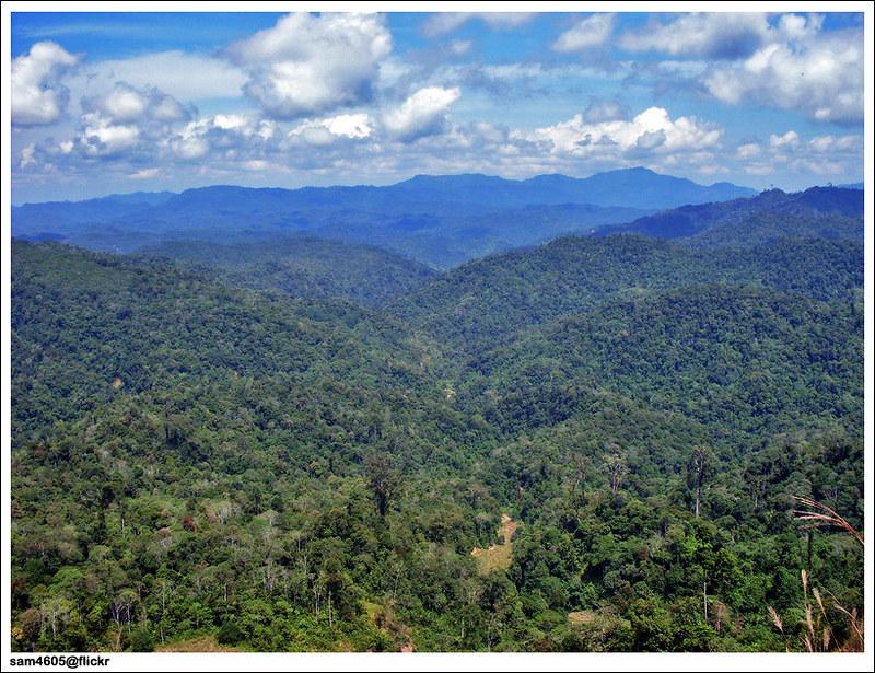 Hutan Simpan Banjaran Crocker Crocker Range Forest Reserve Flickr