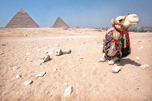 'Chillin', Egypt, Cairo, Pyramids of Giza | by WanderingtheWorld (www.ChrisFord.com)