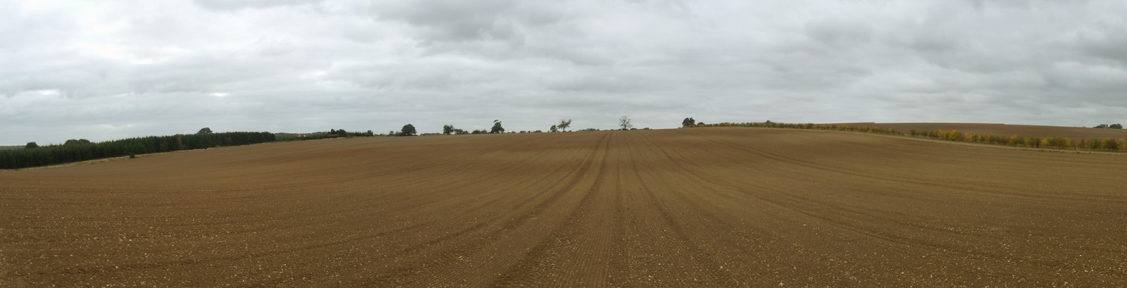 Ploughed field Watton-at-Stone Circular