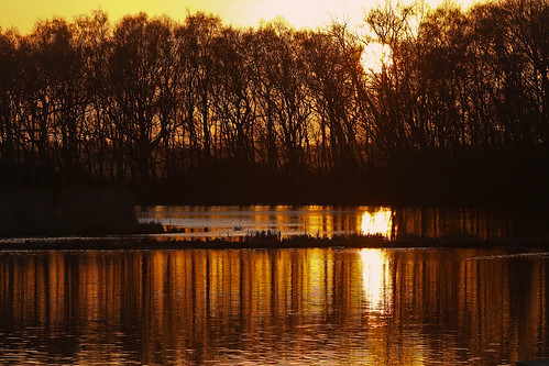 winter sunset lake cold reflection nature water golden reserve lancashire rufford meresandswood