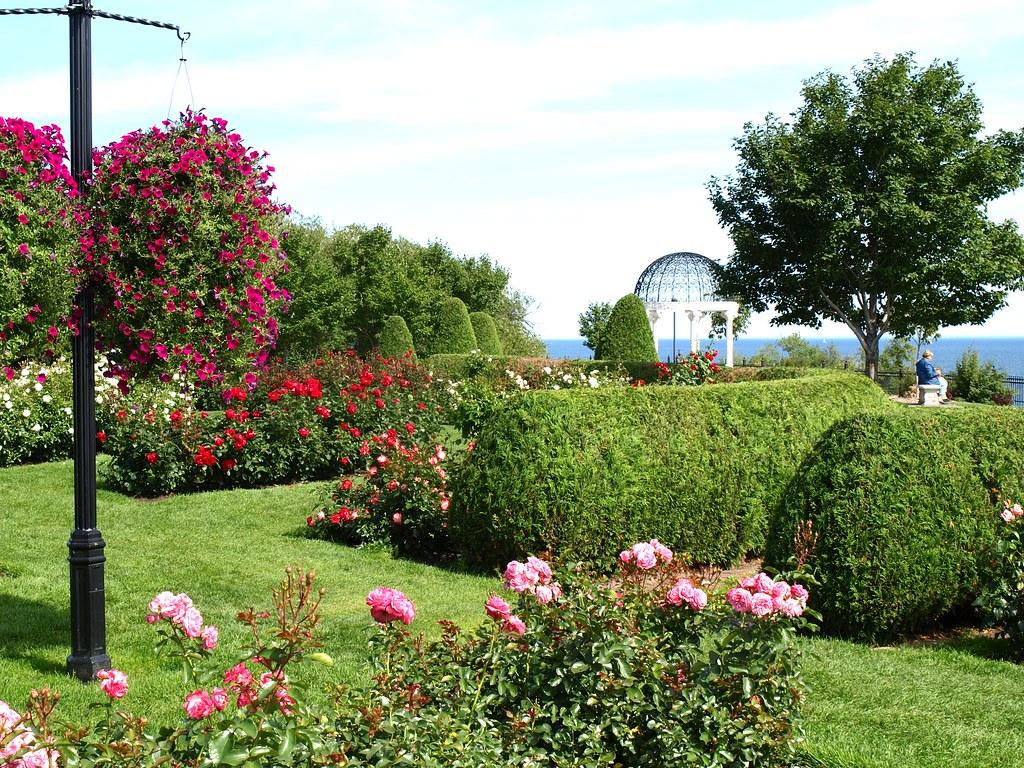 Rose Garden Duluth Mn Donna Flickr