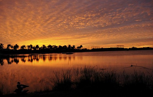 Florida's Sunrise | by SergioMonsalve