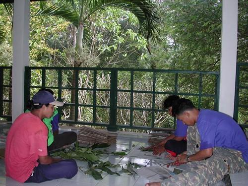 Mon, 01/15/2001 - 14:45 - Pressing plant specimens during establishment of 24-ha plot. Credit: CTFS