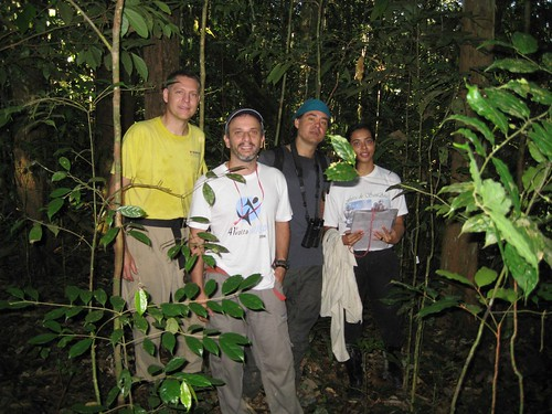 Thu, 07/31/2008 - 05:03 - The three Manaus Permanent Plot Leaders L-R: Kyle Harms, Alexandre Oliveira and Alberto Vicentini with a project intern, Suellen; July 2008. Credit: Kyle Harms.