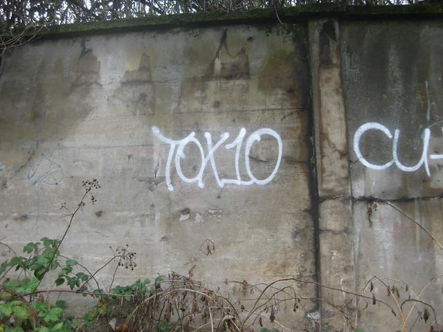 Tox10