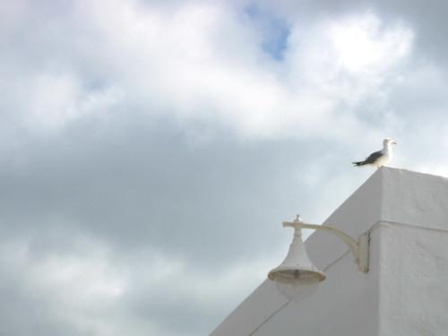 Graciosa Lanzarote 084