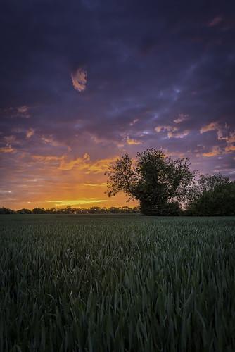 england sunrise 35mm nikon cloudy wideangle essex uksunrise
