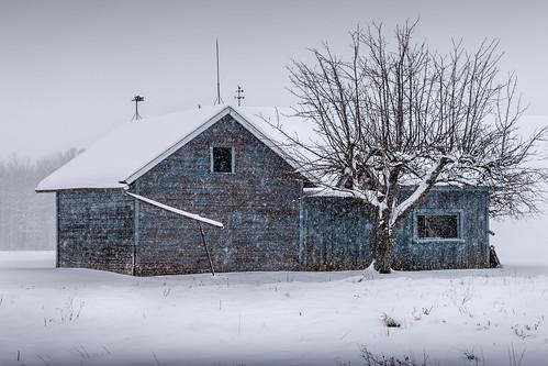 brrrr blue bungalow | by Christian Collins