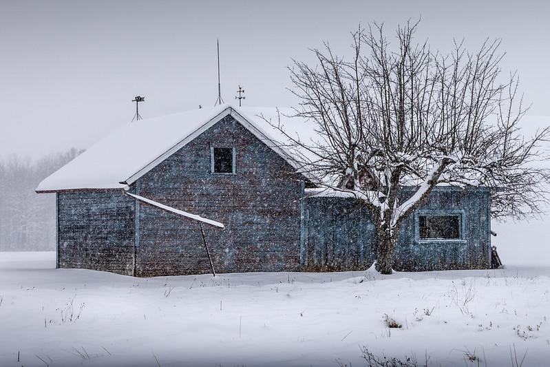 brrrr blue bungalow