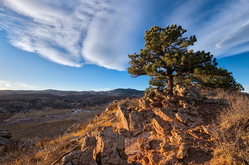 trees sky colorado clouds sunset coyoteridge rocks