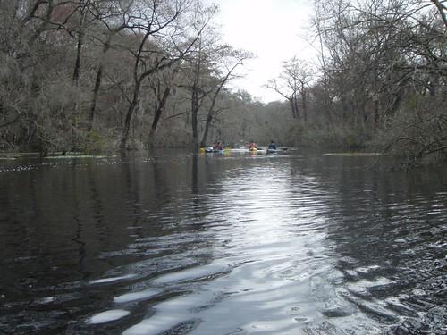 georgia unitedstates kayaking ebenezercreek 8kmnofrincon