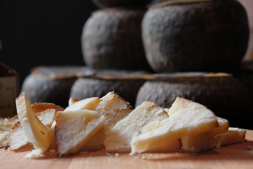 cheeses | by _gee_