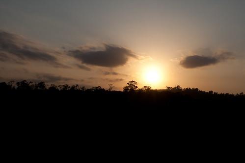 sunset kenya central treetops safari
