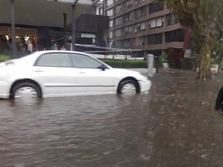 St Kilda Road flooded | by Daniel Bowen