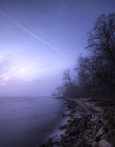 trees sea mist sunrise sigma poland polska hdr mgła 10mm morze baltyk drzewa brzeg sigma1020 rzucewo photographymypassion maltic smsls