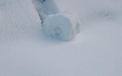 Snow Roll 1605a 130110