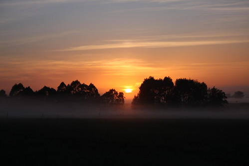 orange fog sunrise lowlands australia richmond nsw