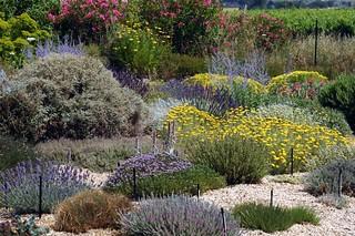 Vue Du Jardin Sec Jardin D Exposition Pepiniere Filippi