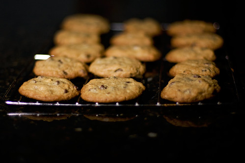 classic cookie ghholt cocolatechip tollhosecookies