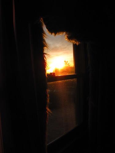 silhouette sunrise curtain maine kristen cates standish