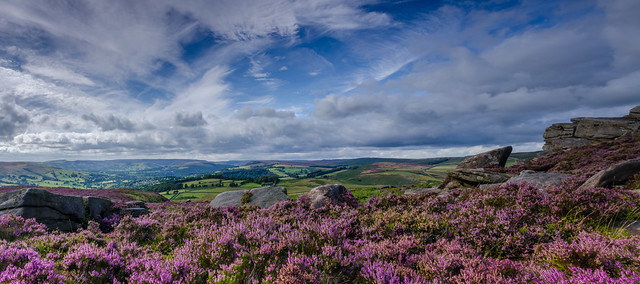 August on the Moors