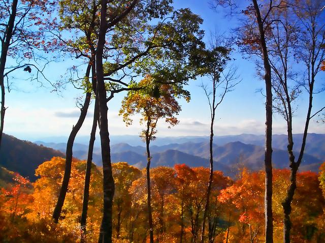 A Blue Ridge Mountain Fall