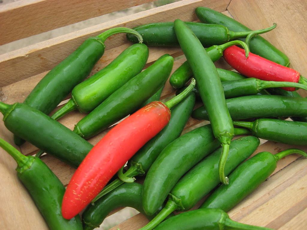 Peppers, Serrano *Hot*