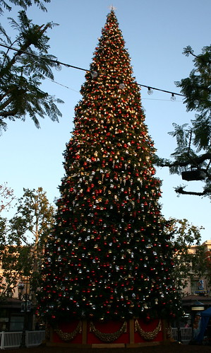 O' . . .  Christmas Tree | by Prayitno / Thank you for (12 millions +) view
