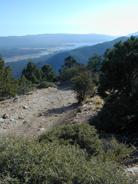 Big Bear from Trail