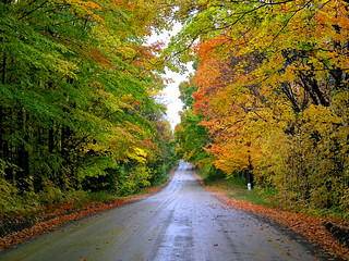 Caledon East Country Road | by Jeannot7
