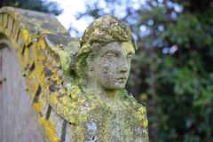 an angel for Munro Cautley